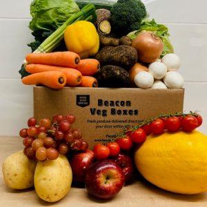 NEW FRUIT, VEG,SALAD BOX